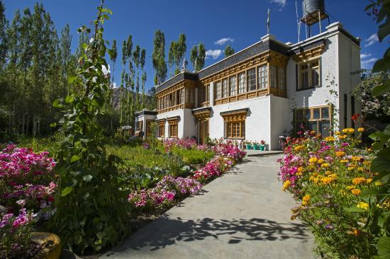 Shaolin Guest House