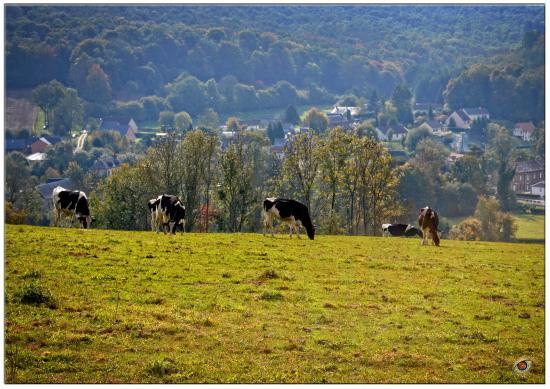 Haute-Normandie, Frankreich: Imag'in Normandie