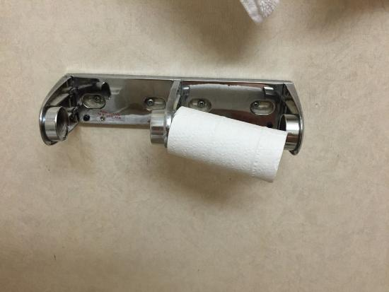 Microtel Inn & Suites by Wyndham Winston Salem: It didn't even hold the toilet paper