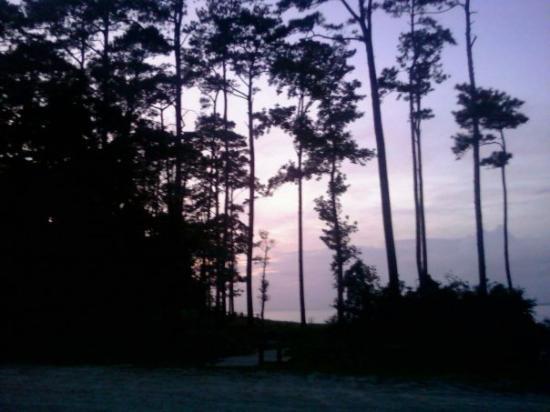 Croatan National Forest: From our campsite, at the edge of the sound.