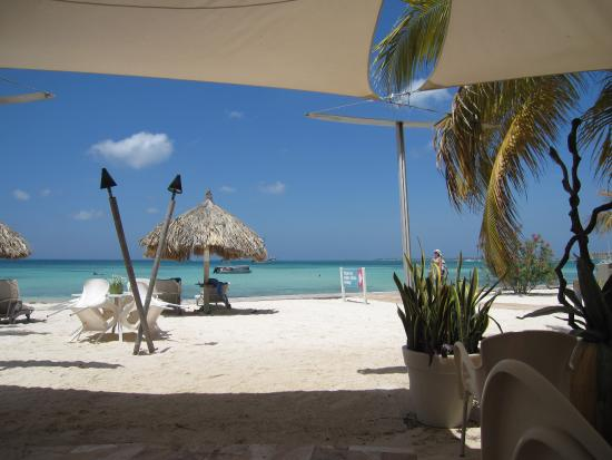 Breakfast buffet pure ocean picture of divi aruba for Aruba divi phoenix