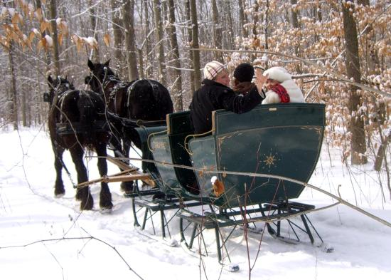 Burton, OH: Great Day for a Sleigh Ride.