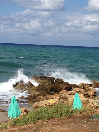 Danaos Beach Hotel照片