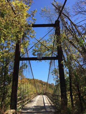 Swinging Bridge: photo2.jpg