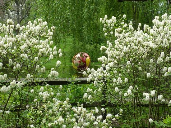 Devon, PA: Jenkins Arboretum