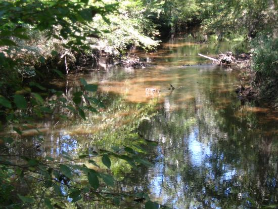 Medoc Mountain State Park: water
