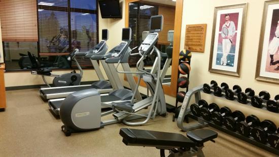 Hilton Garden Inn Oconomowoc: Fitness room