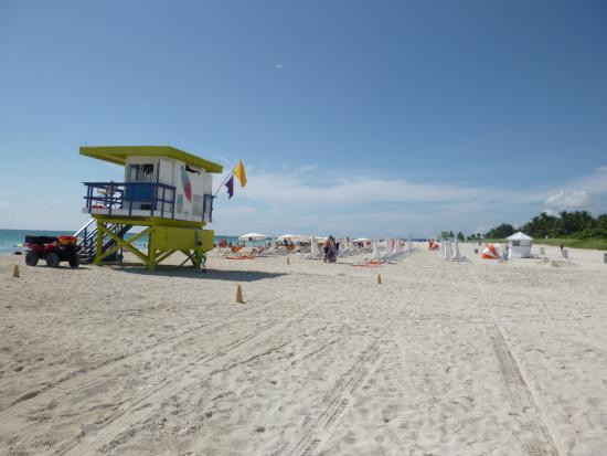 hilton bentley hotels miami hotel of beach south z united america in book states com