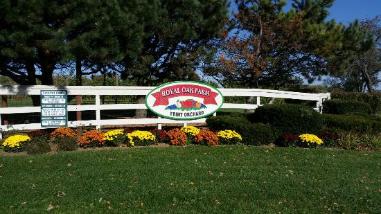 Royal Oak Farm Orchard: What a wonderful day at a beautiful apple orchard, surrounded by God's peace. We picked 1-1/4th