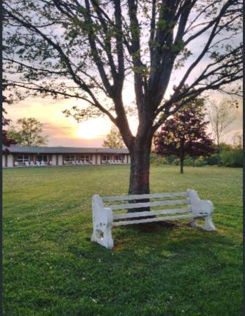 Lukan's Farm Resort: Bench