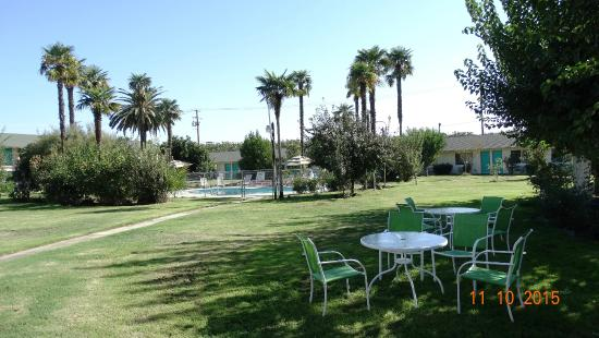99 Palms Inn & Suites: Lawn and garden area