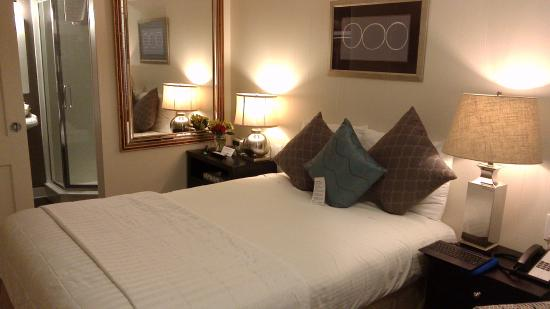 The Palm : cozy room