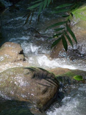 Alajuela, Costa Rica: so relaxing