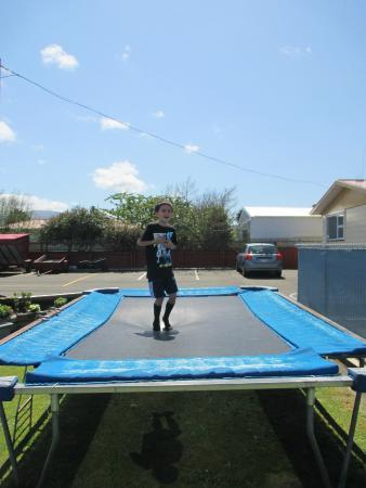 Ormond Street Motel : Cohen Jumping On Tramp at Ormand Street Motel