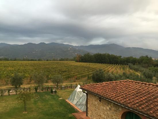 Agriturismo Savernano: View