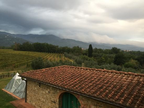 Agriturismo Savernano: View from Bed and Breakfast