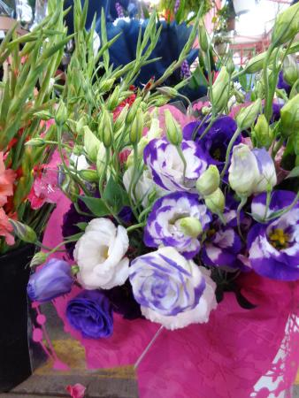 Flowers picture of jean talon market montreal tripadvisor for Meubles montreal jean talon