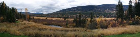 Clearwater Springs Ranch: Panorama of the view in back