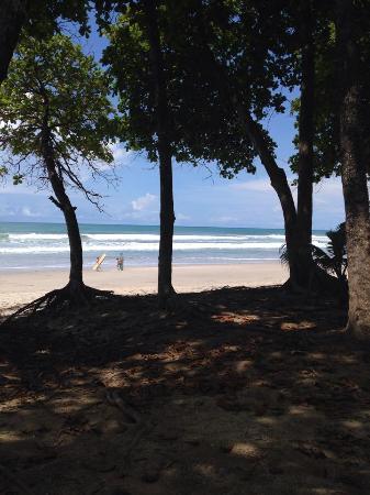 Alma Villa & Restaurant: Linda praia de Santa Teresa, em frente ao local
