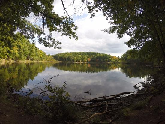 Amherst, MA: Puffers Pond