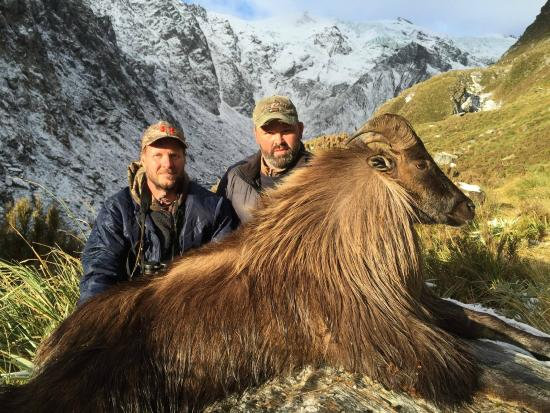 Southern Hunting Adventures: Himalayan Bull Tahr with a Canadian visitor
