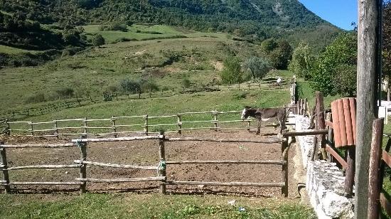 Ranch erbanito foto di erbanito san rufo tripadvisor for Planimetrie della casa del ranch di un livello