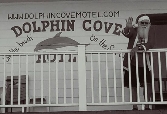 Dolphin Cove Motel ภาพถ่าย
