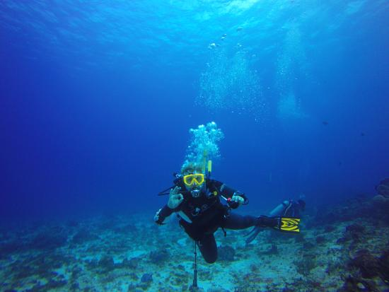 Me at tormentos reef with deep blue picture of deep - Dive deep blue ...