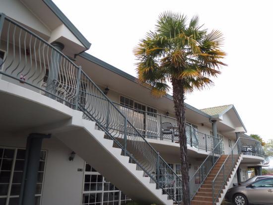 hotel review reviews silver fern rotorua accommodation district plenty region