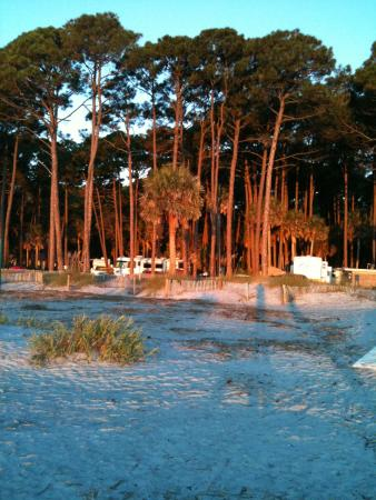 Hunting Island State Park Campground: View of the Campground from the Beach