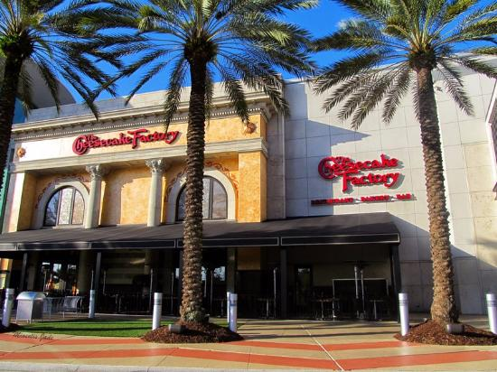 Jul 13,  · The Cheesecake Factory: Mall of millennia Cheesecake Factory - See 8, traveler reviews, 2, candid photos, and great deals for Orlando, FL, at TripAdvisorK TripAdvisor reviews.