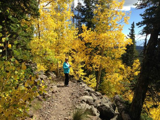 Grand Junction, CO: Fall on the Grand Mesa