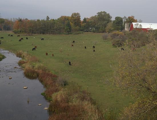 Richmond, MI: Farm country