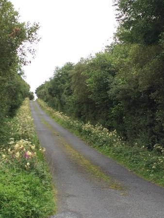 Dunkineely, Irlanda: photo3.jpg