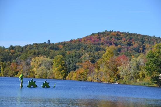 The Marina: Great Fall day for Dragons