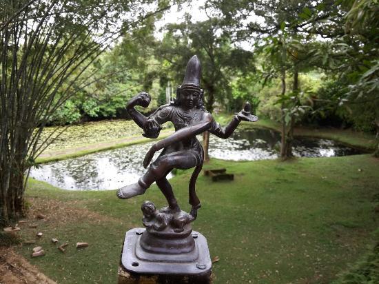 Bentota, Sri Lanka: Wonderful garden.
