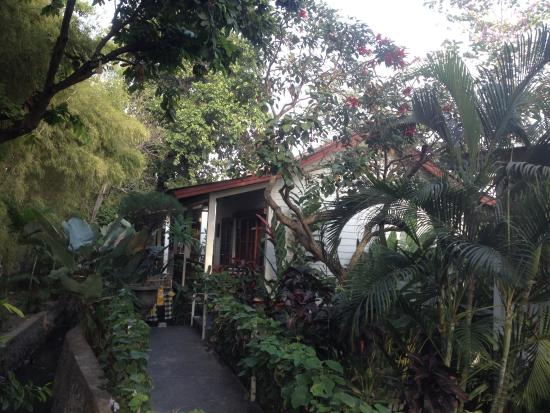 The Studio Bali: hotel view
