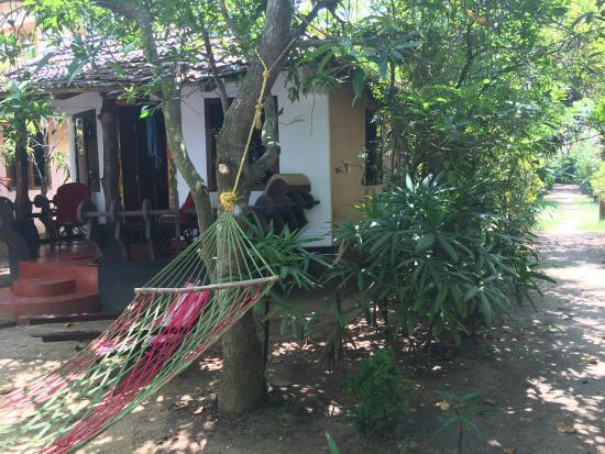 Big Banana Island Retreat: le petit bungalow avec son hamac devant la rivière