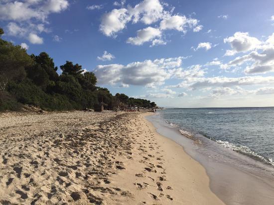 New Barcavela Hotel: Beach