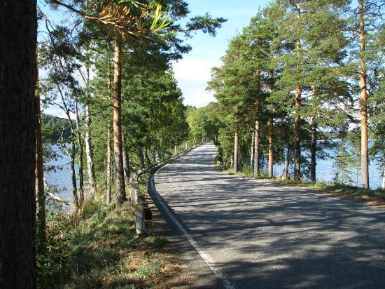 Road on Punkaharju Ridge