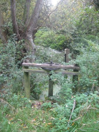 Stodmarsh National Nature Reserve: Old Sluice Gate