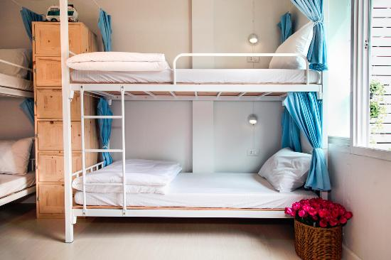 Bunk Beds Mix Dormitory Type Of Room Picture Of Coop Hostel