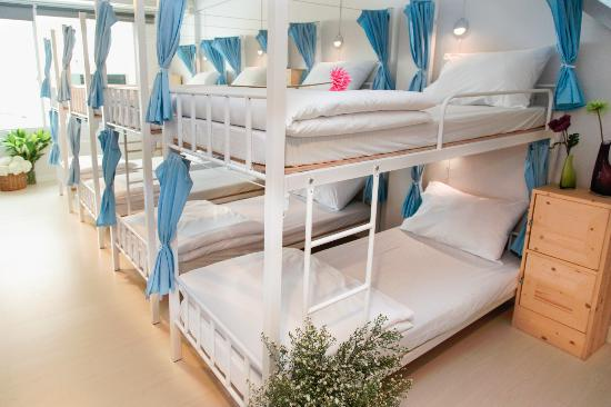 Bunk Beds For Ladies Only Dormitory Type Of Room Picture Of Coop