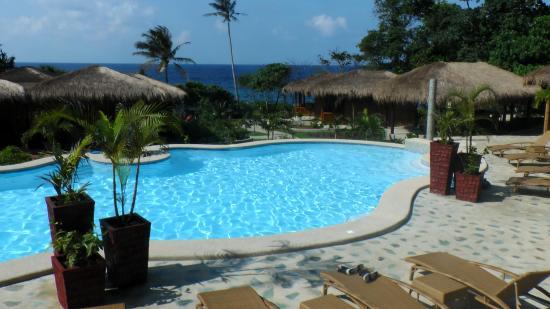 View of pool ocean from chalet 11 picture of magic oceans dive resort anda tripadvisor - Magic oceans dive resort ...