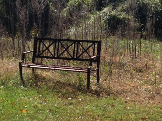 High Meadows Inn: Garden