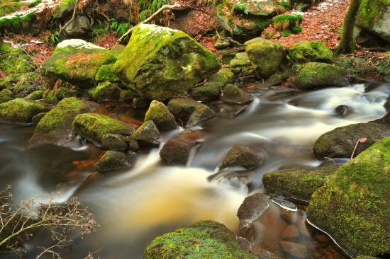 Grindleford, UK: padley gorge