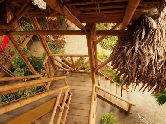 Sol Inn: La descente vertigineuse dans le jardin