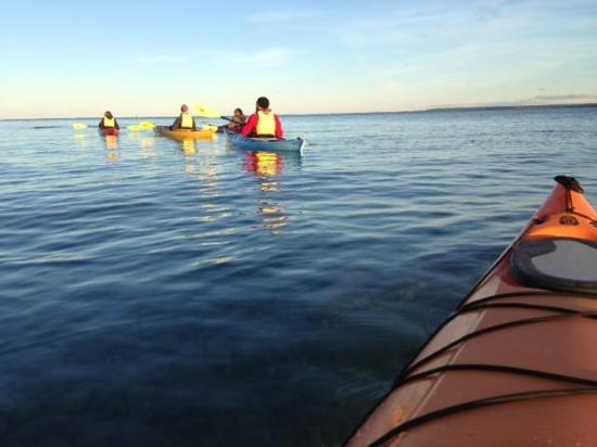 Great Turtle Kayak Tours: Kayaking