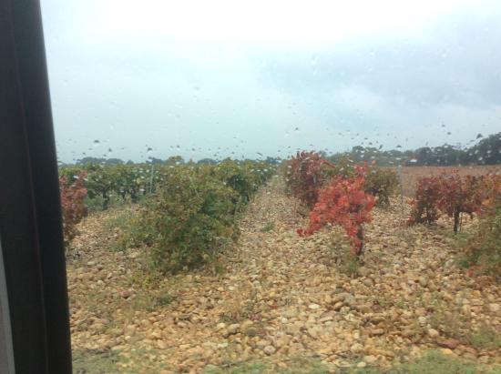 Sablet, فرنسا: Rocky soil