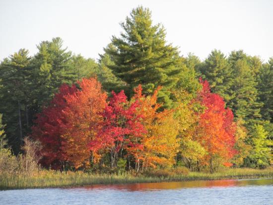 North Waterboro, ME: Lake Arrowhead Fall 2015